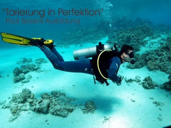 Tarierung in Perfektion Padi Tauchausbildung Tauchkurs Taucher Kurs